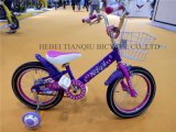 OEM Accepted Boy Bike Bicycle/Children Bike