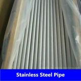 SA213 de Naadloze Pijp van het roestvrij staal van de Vervaardiging van China