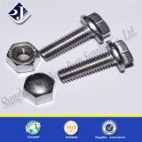 Hardware dell'acciaio inossidabile 304