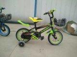 جيّدة يبيع [شنس] صاحب مصنع [غود قوليتي] جبل أطفال درّاجة