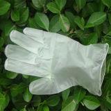 Guanto a gettare libero del PVC della polvere dei guanti del vinile
