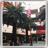 Nouveau style fibre de verre date artificielle Palm Tree
