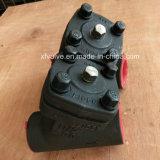 Api 800lb normal a modifié le type tamis de la soudure en acier Y