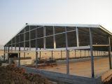 Edifício pré-fabricado das aves domésticas para a galinha da camada da grelha
