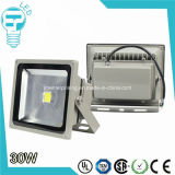 Diodo emissor de luz Floodlight de RoHS Approved 30W COB SMD Outdoor do CE