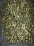 Serie vegetal de TPM La deshidratación Secadora