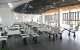 接続されたレストランの家具の表および椅子