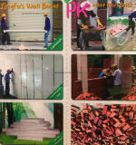 새로운 2016 벽 디자인을%s 대리석 표면 PVC 천장판/PVC 벽면