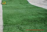 Sport bedeckt synthetischen Rasen für Fußball mit Gras