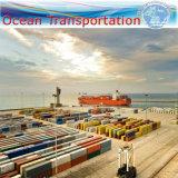 """Serviço da consolidação da expedição do oceano, transporte internacional, 20 """" /40 """" de recipiente"""