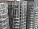 Rete metallica quadrata galvanizzata
