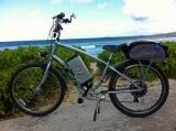 Rueda eléctrica del motor del kit de la conversión de la bicicleta de la empanada elegante con el regulador programable incorporado 24V 36V 48V 200W 300W 400W