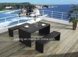 Competivo Preço Mais vendidos Jardim ao ar livre Alumínio + PS-Móveis de madeira Set de jantar Set de banco por mesa longa (YT376)