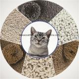 Sauber und Streifen-Bentonit-Katze-Sänfte aufhäufend