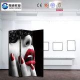 Menschliche Abbildung gedruckter moderne Art-hölzerner Bildschirm