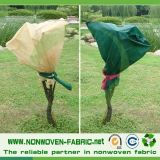 Garten Fleece pp.-Non Woven Farbic für Plant Covers