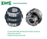 Coupling girante per Industrial Equipment