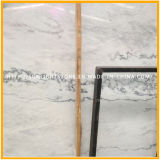 Telhas de revestimento de pedra de mármore brancas barato Polished naturais de China