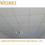 Het Net van /T Bar/T van de Netten van het plafond (zwarte lijn)/het Systeem van de Opschorting