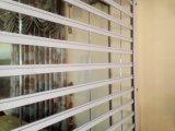 Puerta comercial de las persianas enrrollables del policarbonato