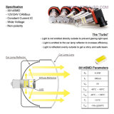 7443 Turbo 3014SMD Canbus LED Tail Light