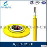 Gjfdv Innenfaser-Optikkabel-einzelnes/multi Modus-Farbband-aus optischen Fasernkabel-Innenfarbband-Faser-Kabel-Preis pro Messinstrument