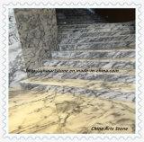 Blanco chino/azulejo negro del mármol de la naturaleza para el suelo y los pasos de progresión