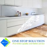 De zuivere Witte Keukenkasten van het Meubilair van het Huis (ZY 1007)
