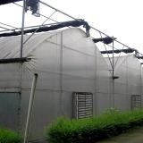 De landbouw Serre van de Plastic Film Multispan voor het Plantaardige Groeien