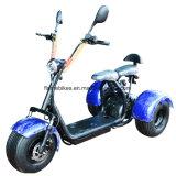 1000W Trike eléctrico con 60V/30ah
