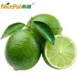 Pulverizador natural - pó secado da fruta do limão/pó suco de limão/pó bebida do limão