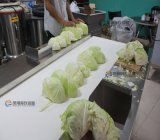 Gd - 586 Flatbed Hobbing Type Leaf Vegetable Cutting Machine