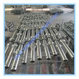 安全なSGSは構築のための電流を通された足場を渡した