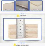 Non-Amianto Decorativo Fireproof Junta de cemento de fibra de 9 mm
