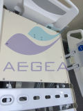 AG Br002c 전기 ICU 침대