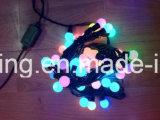 어드레스로 불러낼 수 있는 크리스마스 점화 LED 끈 RGB LED 점 화소