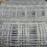 frontière de sécurité galvanisée de cerfs communs de Tightlock tissée par noeud fixe d'acier à haute limite élastique de 5FT pour l'Australie