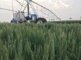 Het zij Systeem van de Irrigatie van de Beweging met Systeem Chemigation