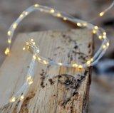 Les lumières micro de branchement de la graine argentée de cuivre DEL 8 de fil de plugin 160 DEL chauffent le blanc