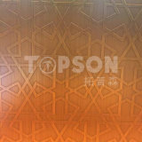 gravure de miroir de feuille d'acier inoxydable de feuillard 316 201 304 pour le Module de cabine de cuisine