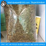 Voedsel Van uitstekende kwaliteit van de Kip van de Meelwormen van het Voedsel voor huisdieren het Droge