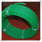 Correas modificadas para requisitos particulares de la PU de 12m m con la cuerda de nylon