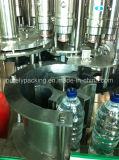 Machine de remplissage de bouteilles automatique de l'eau de boissons de série de Cgn
