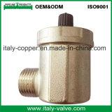 L'ottone di vendita caldo del Ce ha forgiato le valvole del cunicolo di ventilazione (IC-3100)