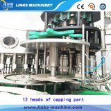 Automatische het Vullen van het Mineraalwater van het Type van Cilinder Machine