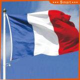 Su ordinazione impermeabilizzare e modello no. della bandiera nazionale della Francia della bandiera nazionale di Sunproof: NF-012