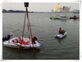Vetroresina della barca di velocità