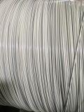 Bride de fixation enduite de fil de nettoyeurs de PVC