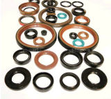 Tc NBR Viton Double Lip Rotary Shaft Oil Seal