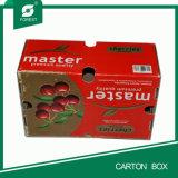 Bello contenitore di imballaggio su ordinazione della ciliegia sulle vendite calde